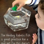 Hexbug robotic fish aquabot 2