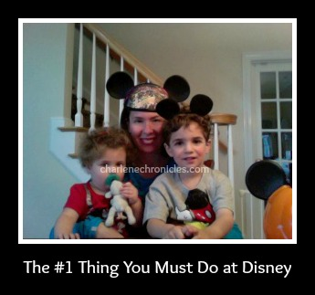 Number One thing to do at Disney World