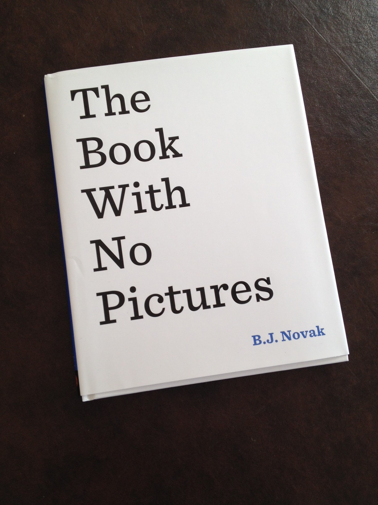the book with no pictures pdf